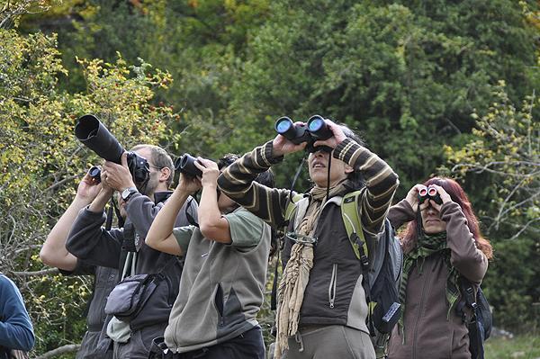 Imagen post: Comunicación en mano, pájaros volando: claves para el turismo ornitológico